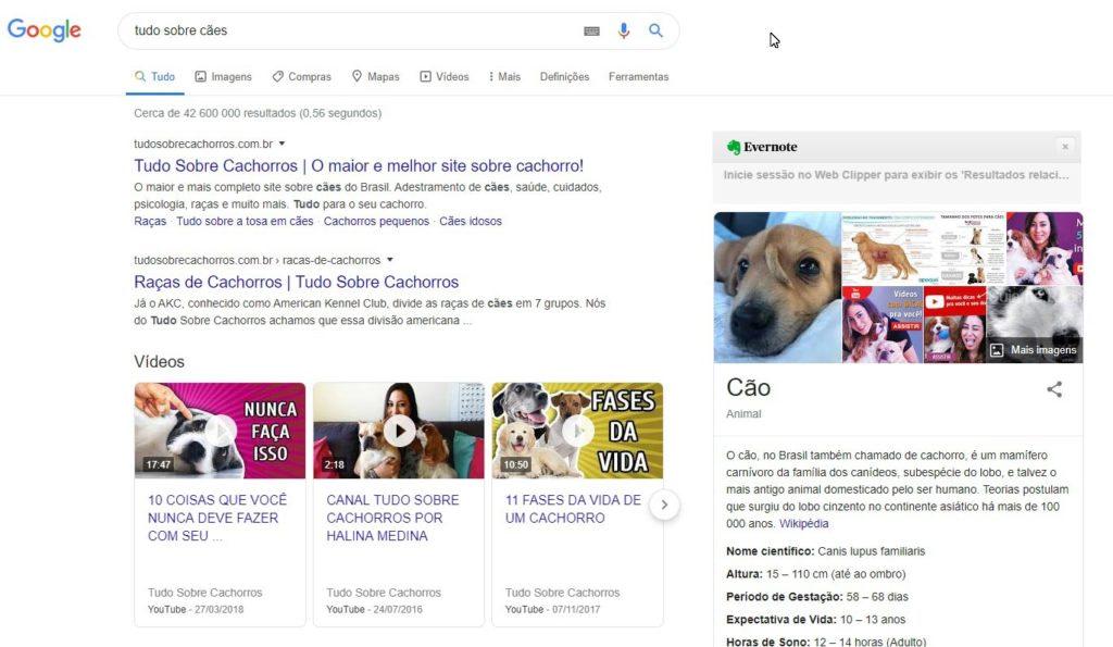 pesquisar palavra chave no google 2